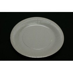 100 assiettes en carton 18cm blanc